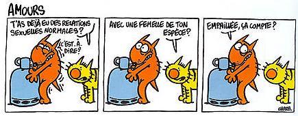 Blague du jour ! - Page 2 Maurice_et_patapon_amours