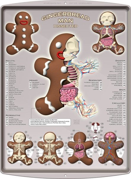 jason_freeny_gingerbread